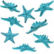 Collection set of Blue starfish isolated on white background — Stock Photo