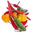 Red hot peppers mixed group isolated on white background — 图库照片