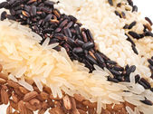 Varicoloured rice Surface Close up Macro Texture — Stock Photo