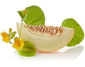 Meloen segmenten met bloemen en bladeren geïsoleerd op een witte achtergrond — Stockfoto