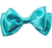 Beautiful bow close up isolated on white background — Stock Photo