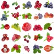 Collection set of fresh ripe fruits and berries close up — Stock Photo
