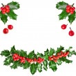 Christmas garland of european holly Ilex — Stock fotografie