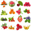 Collection set of fresh ripe fruits berries close up  — Stock Photo