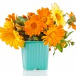 Beautiful bouquet of flower calendula officinalis — Stock Photo