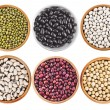 Collection set of Various dried kidney legumes haricot beans in wooden bowl — Stock Photo #34311015
