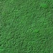 Green Colored concrete wall texture — Stock Photo