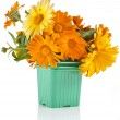 Beautiful bouquet of flower calendula  — Stock Photo