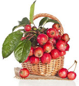 Apple fruits with water drops decor in wooden basket — Stock Photo