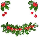 Christmas garland of european holly Ilex — Stock Photo
