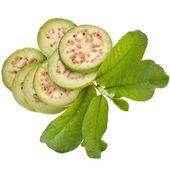 Verse guave fruit met bladeren close-up — Stockfoto