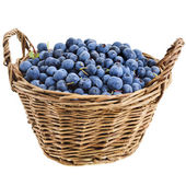 Blueberry in basket — Stock Photo