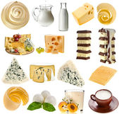 Collection set of dairy milk produce, cheese,curd, cottage — Stock Photo