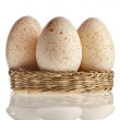 Eggs in basket isolated on white background with clipping path — Lizenzfreies Foto
