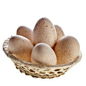 Yumurtalar izole kırpma yolu ile beyaz arka plan üzerinde sepette — Stok fotoğraf
