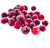 Cranberries close up isolated on white background — Stock Photo