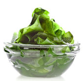 Seaweed kelp (laminaria) in glass bowl close up isolated on white background — Stock Photo