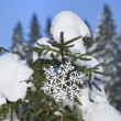 Stock Photo: Fir branches in snowdrift with Christmas snowflake against blue sky