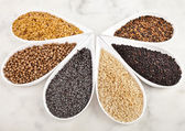 Different spice seed in white porcelain dishes over marble background — Stock Photo