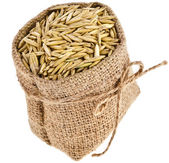 Oat seed grain in burlap sack bag isolated on white background — Stock Photo