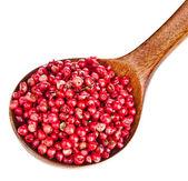 在一个木勺,在白色背景上的粉红胡椒 — 图库照片