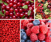 Collage of Ripe Sweet Red Berries — Stock Photo