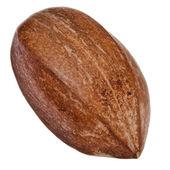 One Pecan nut close up — Stock Photo