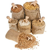 Corn kernel seed meal and grains in bags — Stock Photo