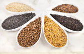 Different spice seed in white porcelain dishes — Stock Photo