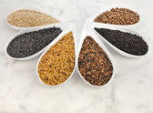 Border frame of different spice seed — Stock Photo
