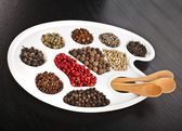 Collection of various colorful spices — Stock Photo