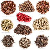 Collection set of colored peppercorn heap — Stockfoto