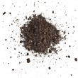 Stock Photo: Pile heap of soil humus