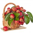 Stock Photo: Apple fruits in wooden basket