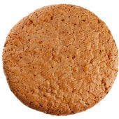 One cookie close up macro — Stock Photo