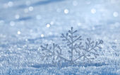 Winter snow surface cover — Stock Photo