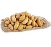 Raw potatoes heap with sack — Stock Photo