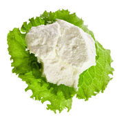 Ricotta Cheese — Stock Photo