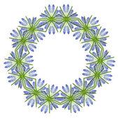 Border Frame of Blue Spring flowers Muscari — Stockfoto