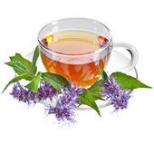 Glass Cup Tea with Mint Leaf and Herb flower — Stock Photo