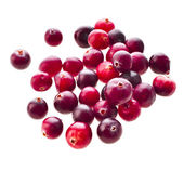 Cranberries close up — Stock Photo