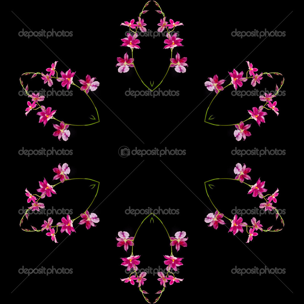 边框框架抽象花纹黑色背景上孤立