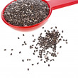 Chia seeds in red scoop — Stock Photo #48501639