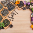 Assortment set of dry tea leaves — Stockfoto