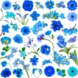 Set of various blue flowers — Stock Photo #48502177