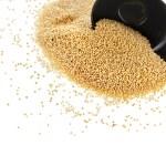 Amaranth popping gluten-free grain cereal — Stock Photo #48503303