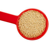 Amaranth popping gluten-free grain cereal — Stock Photo