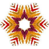 Snowflake made of colored powder spices — Stockfoto
