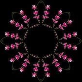 Border Frame Floral Abstract Pattern — Stock Photo