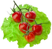 Tomato cherries — Stock Photo